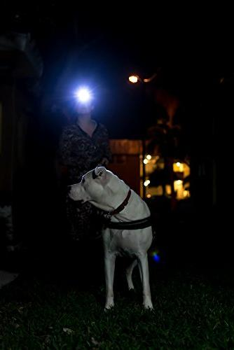 LED - Great for Hiking, Kids, and Dog Walking. of Water with Batteries Included
